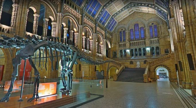 موزه تاریخ ملی لندن