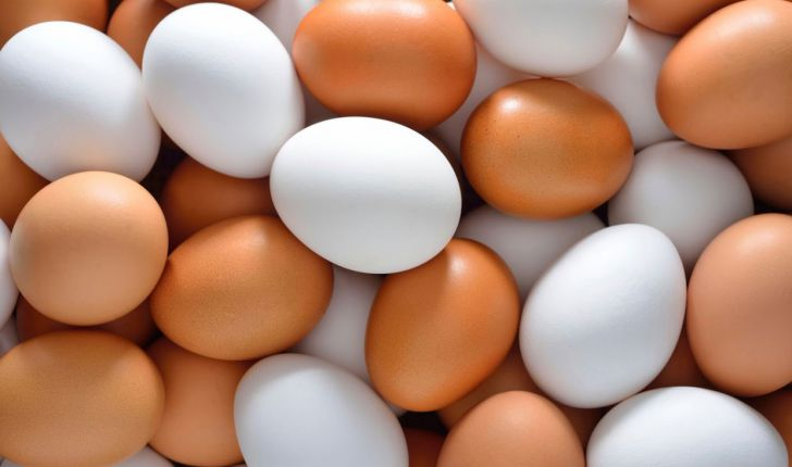 تخم-مرغ