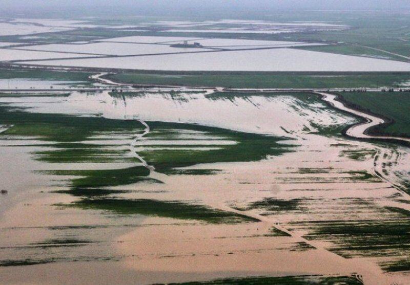 روایتی از جزئیات خسارت سیل به بخش کشاورزی فارس