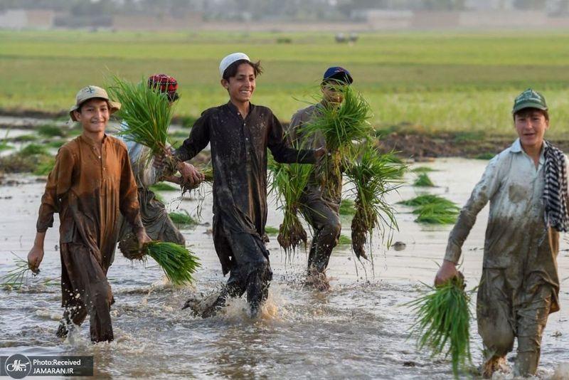 منتخب تصاویر امروز جهان- 21 خرداد 1400
