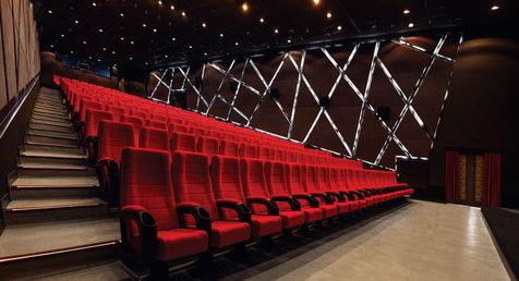 در این سینما دراز بکشید و فیلم ببینید + عکس