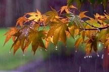 بارندگی پاییزه در آذربایجان شرقی 41.4 درصد افزایش یافت