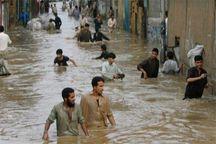 اعلام فراخوان بسیج سازندگی البرز برای کمک به سیلزدگان