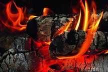 مسمومیت با گاز ذغال یک مادر و کودک را در زرین شهر روانه بیمارستان کرد