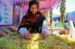 سومین جشنواره انگور و بومگردی حسن رباط برگزار میشود