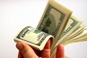 ویروس گرانی دلار در زمستان چه زمانی می رود؟