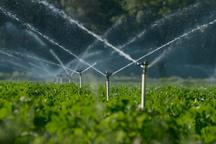 همدان در اجرای آبیاری تحت فشار رتبه سوم کشور را کسب کرد