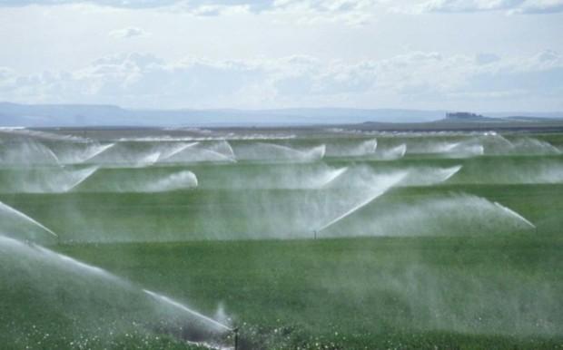 جهاد کشاورزی در عمران و توسعه دیر پیشرو است