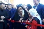 افتتاح بزرگترین مرکز پرورش قارچ مکانیزه شمال کشور در رشت