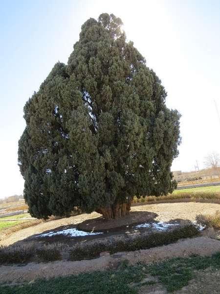 پیشنهاد ثبت ۲ اثر طبیعی آذربایجان غربی در فهرست آثار ملی کشور