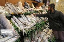 ساندویج ماهی در راه مدارس مازندران