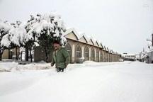 بارش 80 سانتی متری برف در مازندران