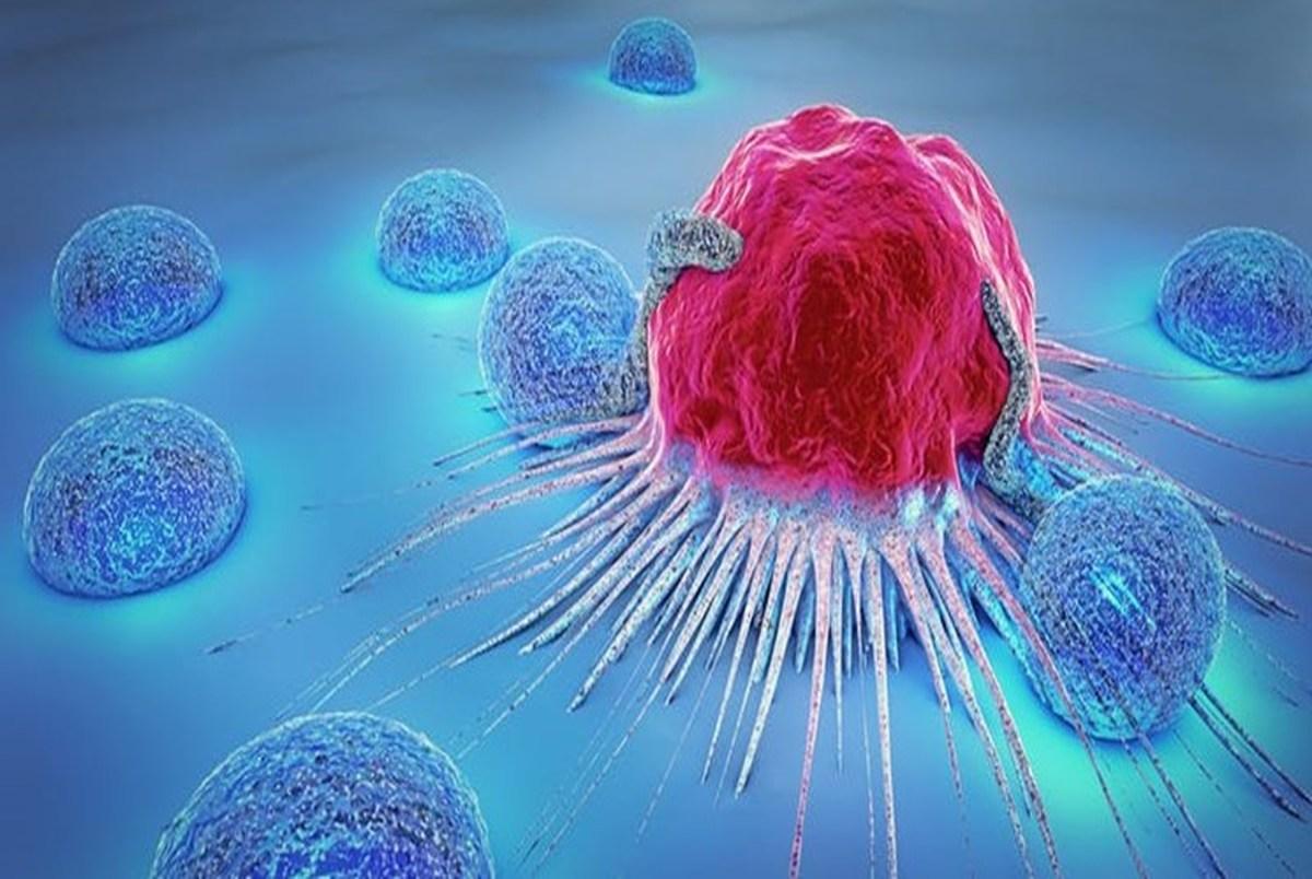 تومورهای سرطانی تا چه اندازه میتوانند در برابر درمان مقاومت کنند؟