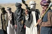 مجلس در رابطه با طالبان چه اقدامی انجام خواهد داد؟