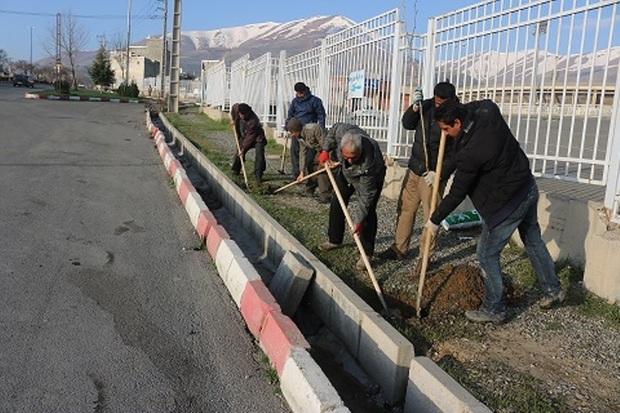 2200 اصله نهال در بلوارهای شهری سنندج غرس می شود