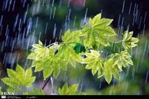 بیشترین بارش اخیر باران در خراسان رضوی نصیب ریوش شد