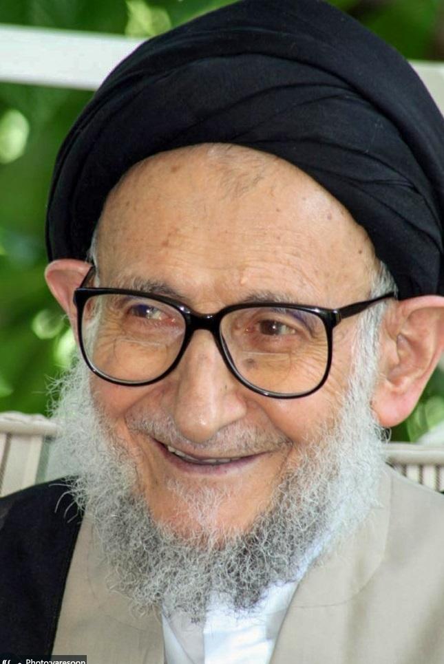 سیدمحمد  ضیاء آبادی