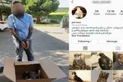 قاچاقچی حیات وحش در فضای مجازی به دام افتاد