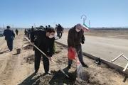 ۱۶۰۰ نهال به یاد شهدای غرب خراسان رضوی در سبزوار کاشته شد