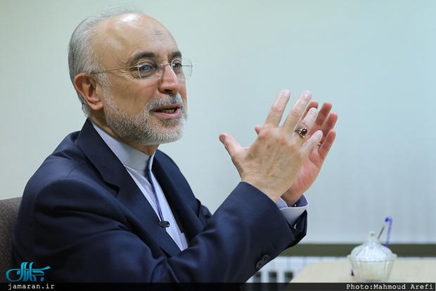 علی اکبر صالحی: موضوع هسته ای بهانه دشمن است