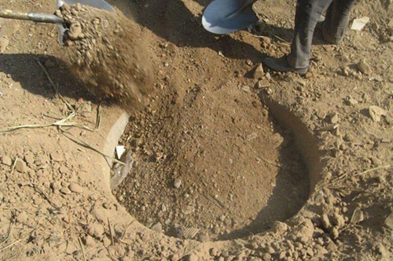 ۳۵ حلقه چاه غیر مجاز در استان بوشهر پر شد
