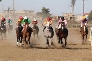 رقابت ۶۵ راس اسب در روز دوم هفته سیزدهم مسابقات اسبدوانی گنبد