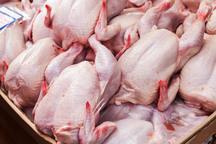 400 تن گوشت مرغ روزانه در خراسان رضوی مصرف می شود