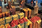دلیل افزایش قیمت لیمو ترش، سیر و زنجبیل در این روزها چیست؟ پاسخ رئیس اتحادیه میوه و تره بار تهران