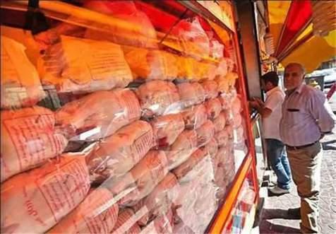 قیمت مرغ دوباره گران می شود؟