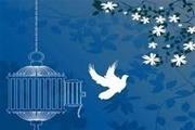 ۲۶۰ محکوم مالی جرائم غیرعمد از زندانهای یزد آزاد شدند