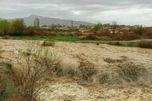 سیلاب بیش از 4 میلیارد ریال به کشاورزی دامغان خسارت زد