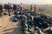 در پرونده هواپیمای اوکراینی برای 10 متهم کیفرخواست صادر شده است/ ۶ گروه کارشناسی تحقیق کردند