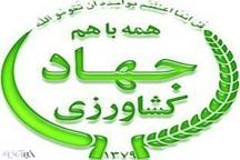رئیس جهادکشاورزی استان: زمین خواران عناصری سودجو هستند و باید برابر قانون با آنها برخورد شود