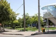 حفاظت از بوستان شمشاد با جدیت از سوی شهرداری پیگیری میشود