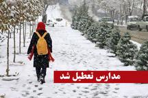مدارس ابتدایی دماوند، پردیس و فیروزکوه تعطیل شد
