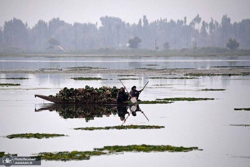 منتخب تصاویر امروز جهان- 2 مهر 1400