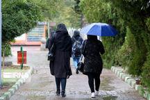 بارشهای رگباری خراسان رضوی را فراگرفت