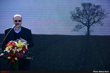 رفع آلودگیهای بصری با گسترش درختکاری