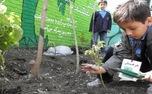 مدارس طبیعت، از رویا تا واقعیت!