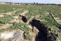 سیل حدود ۹۰ میلیارد ریال به بخش کشاورزی نیکشهر خسارت وارد کرد