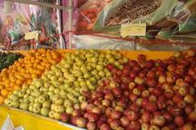 میوه نوروزی از ٢٥ اسفند در  همدان توزیع می شود