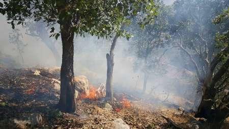 اعزام بالگرد برای مهار آتش کوه دلا در اندیکا
