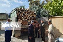 محموله ۶ تُنی چوب قاچاق در سقز کشف شد