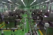 ۲۱ کارخانه در سال رونق تولید به چرخه تولید بازگشتند