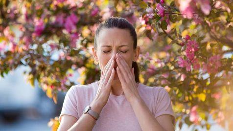 ۵ گزینه غذای گیاهی برای کاهش علائم آلرژی بهار!