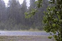 میزان بارش در اردبیل 15 درصد افزایش یافت