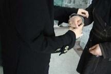سارق بدل انداز با هوشیاری پلیس کرمان دستگیر شد