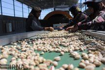۸۰ واحد صنایع بخش کشاورزی در استان تهران فعال شد