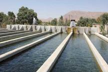 ممنوعیت پرورش آبزیان در خوزستان و ابهام در وضعیت 14 هزار شاغل در آن