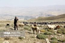 کوهنوردان کارگر سراسر کشور به قله فندقلو آذربایجان شرقی صعود کردند